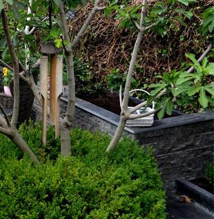 Vijver en trap lab21 - Creeren van een tuin allee ...
